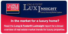 LuxInsight Reports
