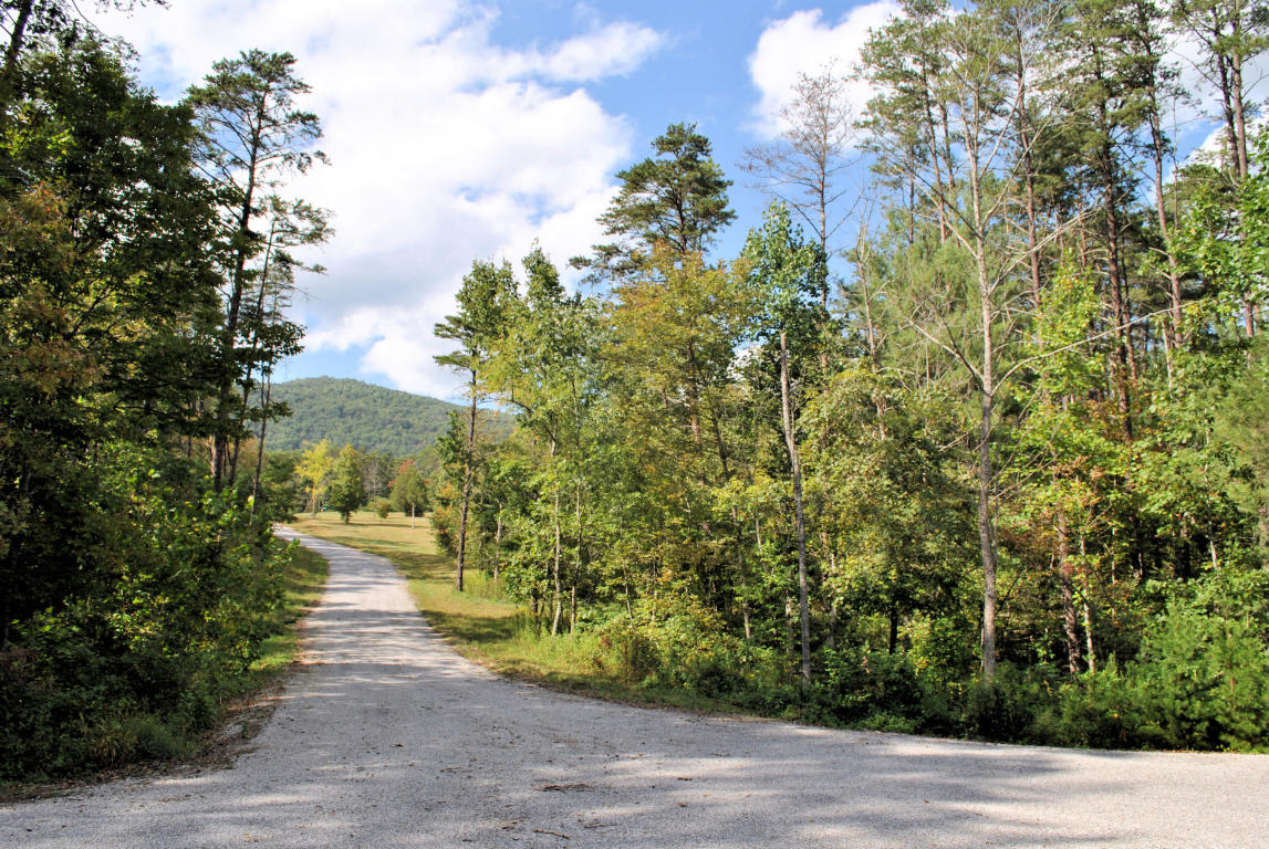 Land for Sale at 3761 Knob Creek Trl Elliston, Virginia 24087 United States