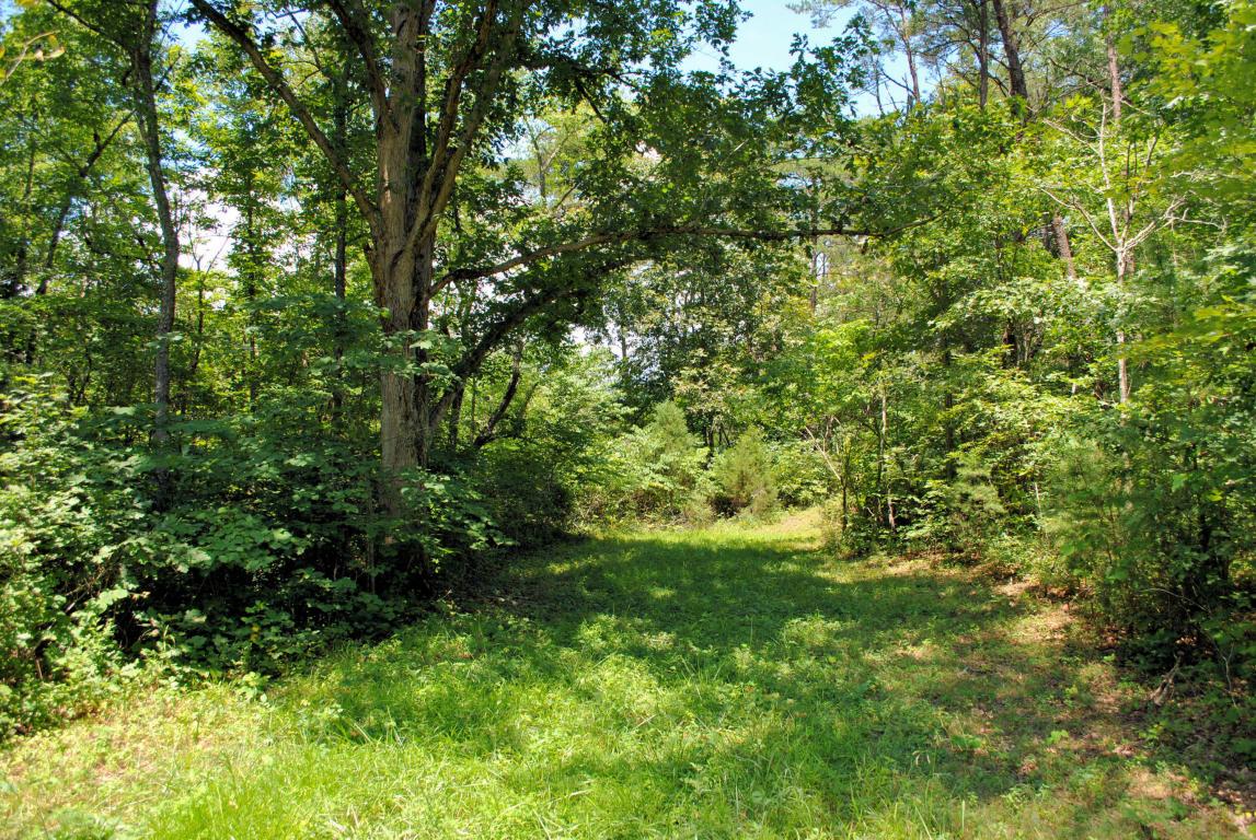 Land for Sale at 3741 Knob Creek Trl Elliston, Virginia 24087 United States