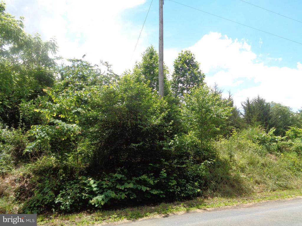 Land for Sale at Castleton Ford Road Rd Castleton Ford Road Rd Castleton, Virginia 22716 United States