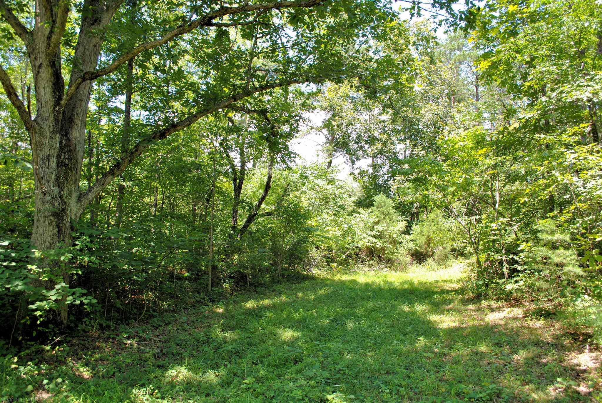 Land for Sale at 3741 Knob Creek Trail Elliston, Virginia 24087 United States