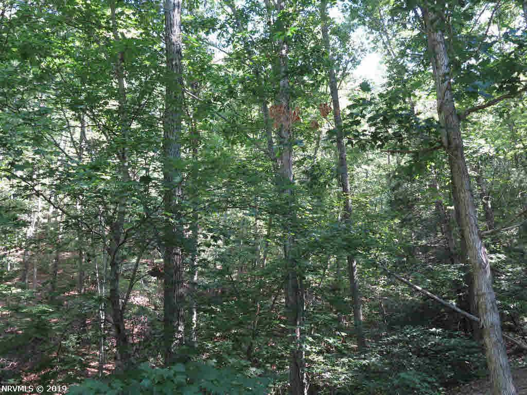 Land for Sale at Tbd Day Lane Tbd Day Lane Shawsville, Virginia 24162 United States