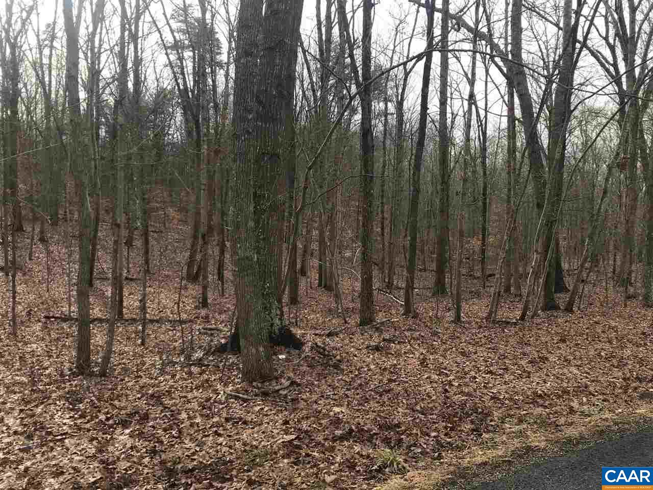 Land for Sale at Shannon Hill Rd #38 Shannon Hill Rd #38 Columbia, Virginia 23038 United States