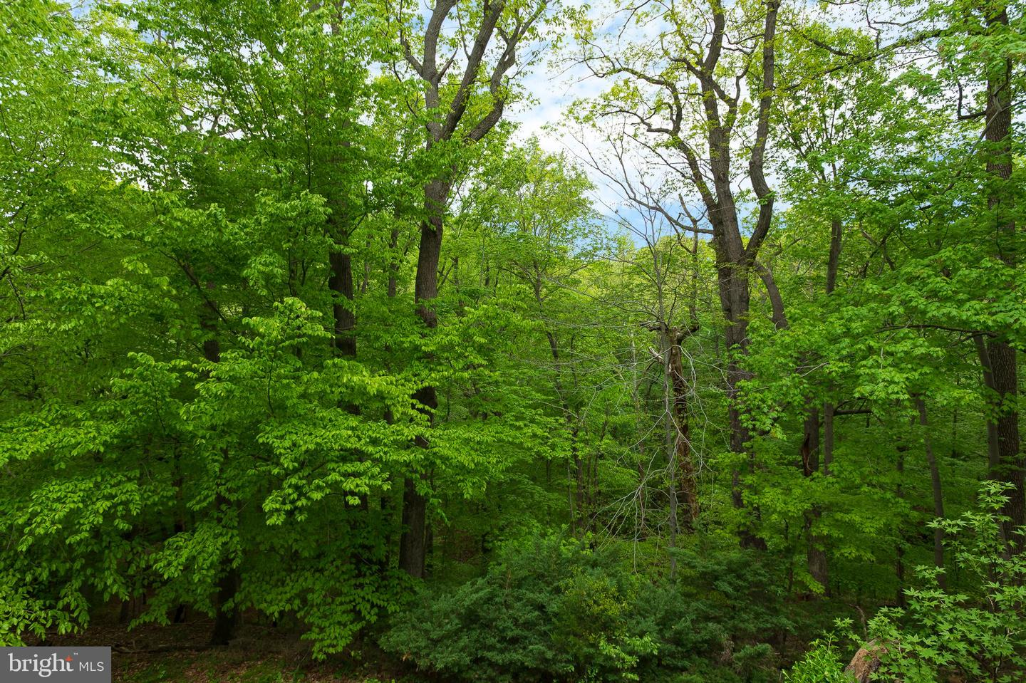 Additional photo for property listing at 1959 Valley Rd Annapolis, Maryland 21401 United States