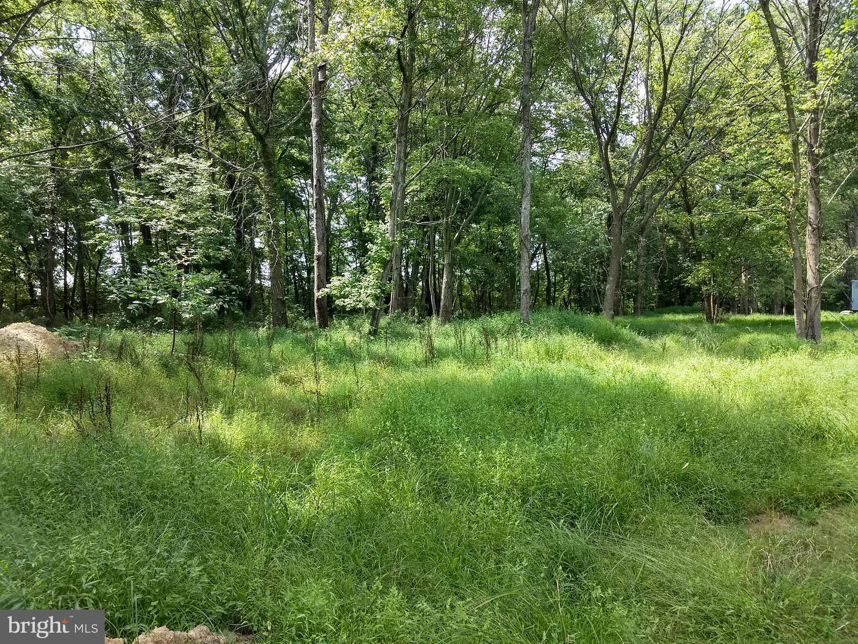 Land for Sale at 22311 Bernard Ln 22311 Bernard Ln Middleburg, Virginia 20117 United States