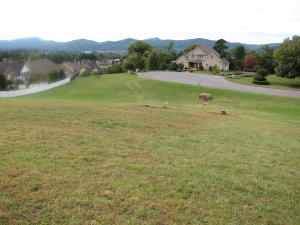 LOT 13  STONEYBROOK,  Roanoke, VA