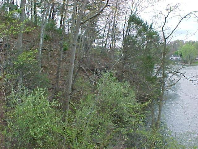 Lot 10 , Goodview, VA, 24095