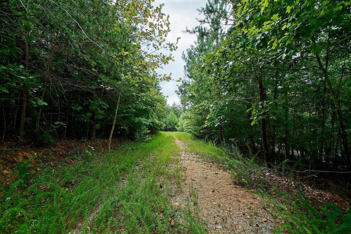 LOT 33 , Lynch Station, VA, 24571
