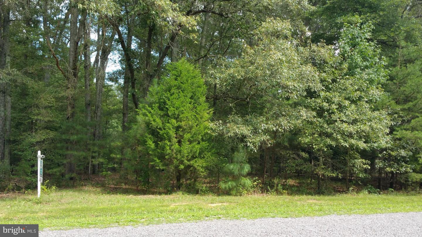 Lot 2 Attopin Lookout, King George, VA, 22485