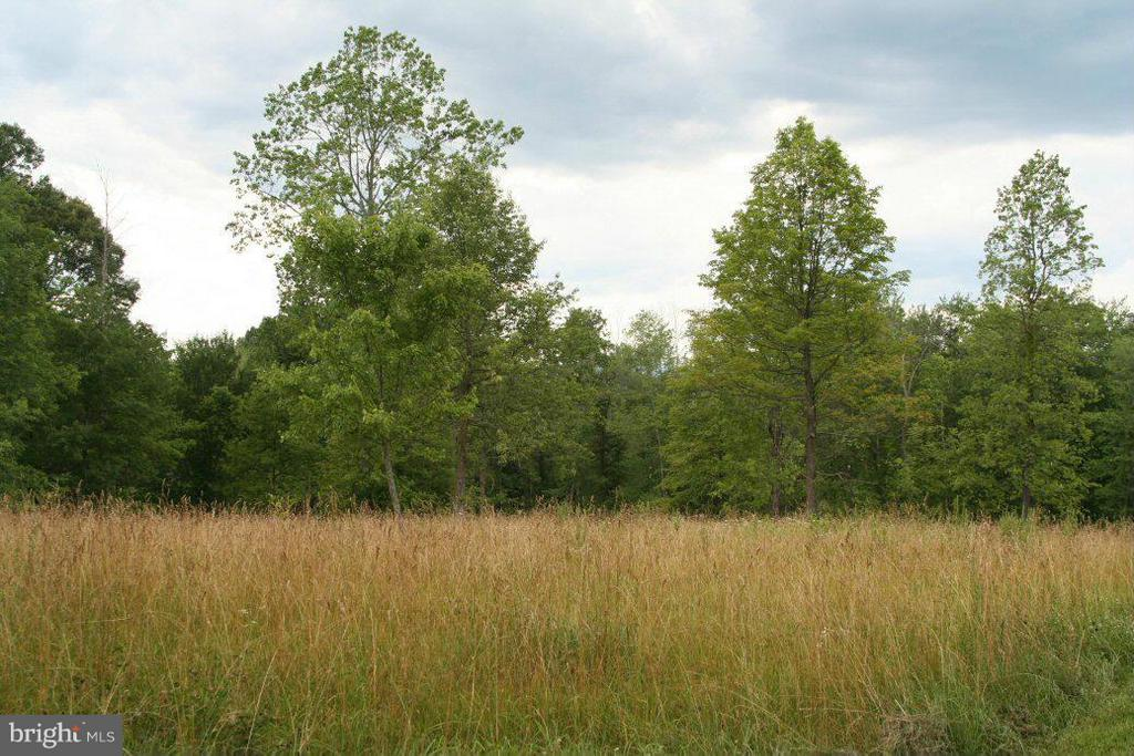 Repton Mill, Aroda, VA, 22709