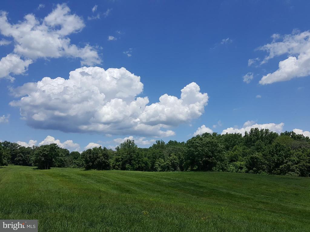 36651 Mountville, Middleburg, VA, 20117