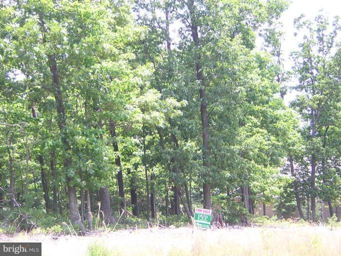 331  Lookout Ridge,  Hedgesville, WV