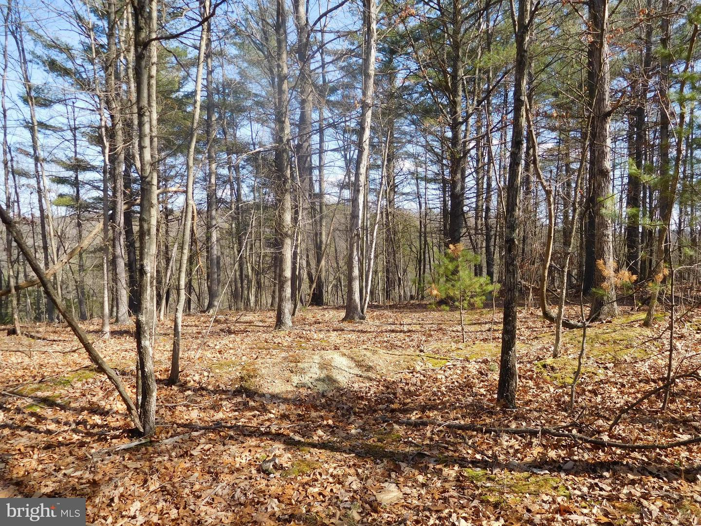 Lot 14 Frenchburg Estates, Augusta, WV, 26704
