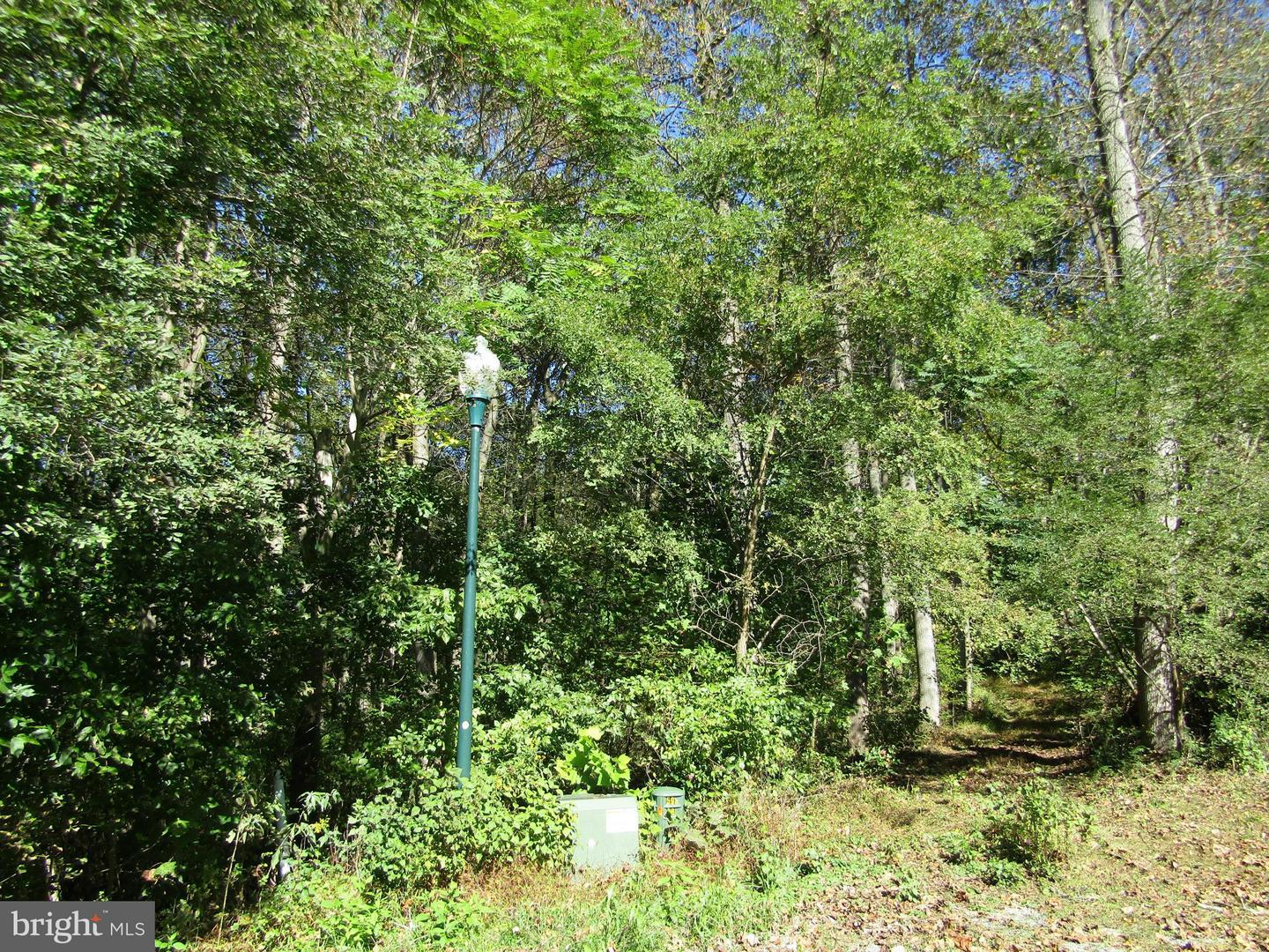 Lot 4 Chesapeake, Hedgesville, WV, 25427