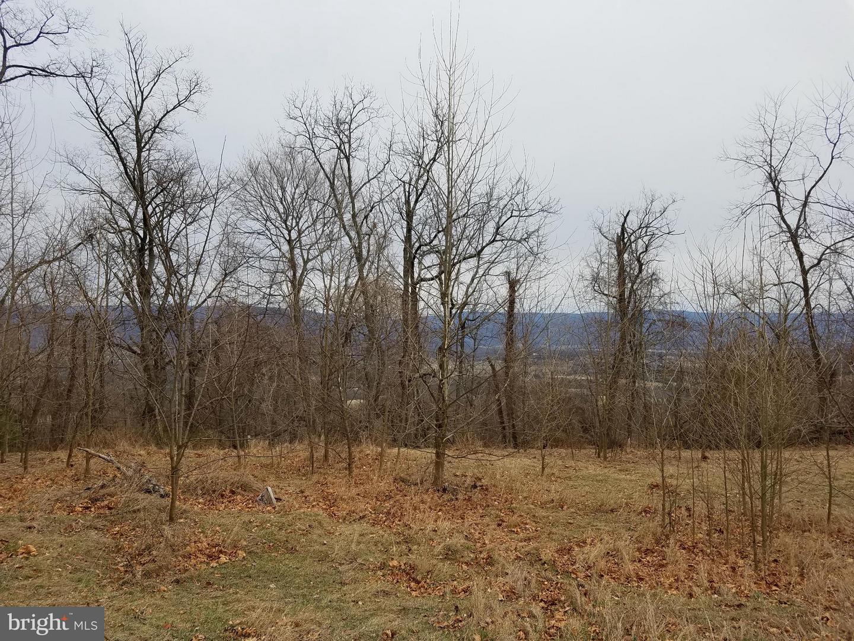 19 Shawnee Hill, Old Fields, WV, 26845