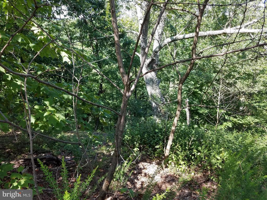 291 Ridge View, Moorefield, WV, 26836