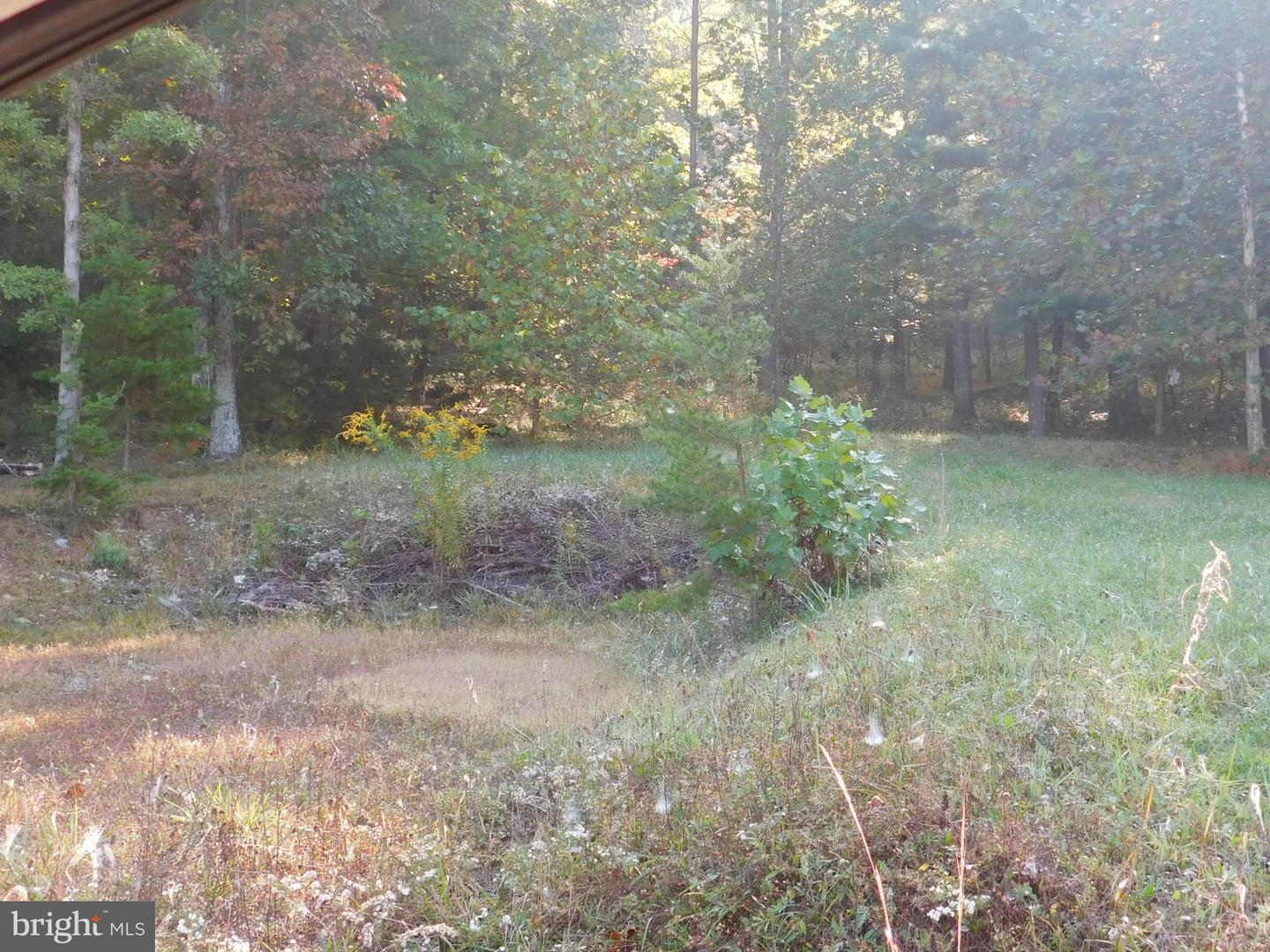 Lot 7 North River Rd, Augusta, WV, 26704