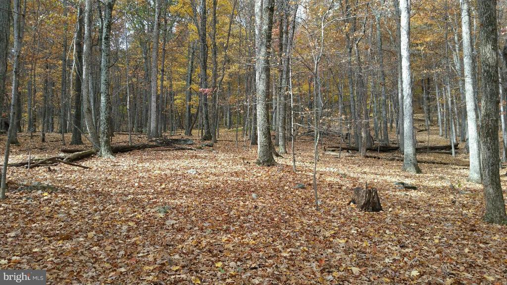 5 Woodpecker, Berkeley Springs, WV, 25411