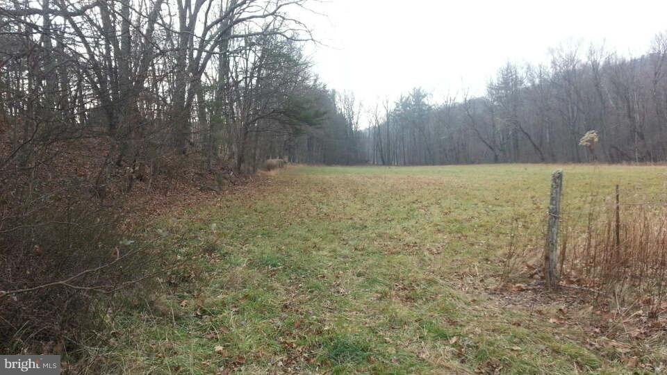 Lot 5 Winchester Grade, Berkeley Springs, WV, 25411