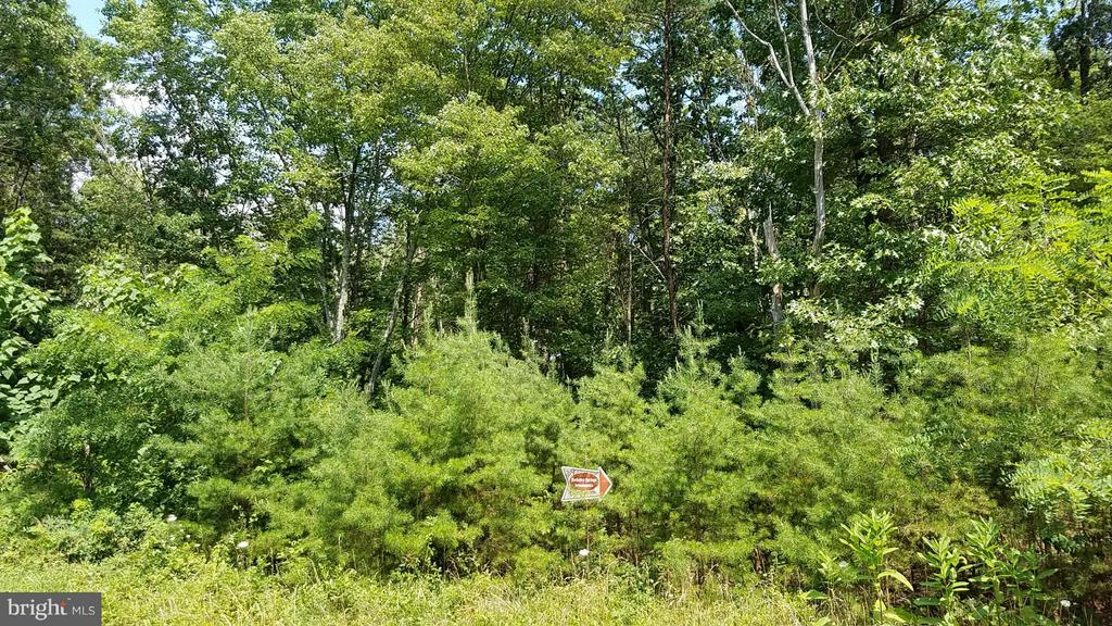 9 Silage, Berkeley Springs, WV, 25411