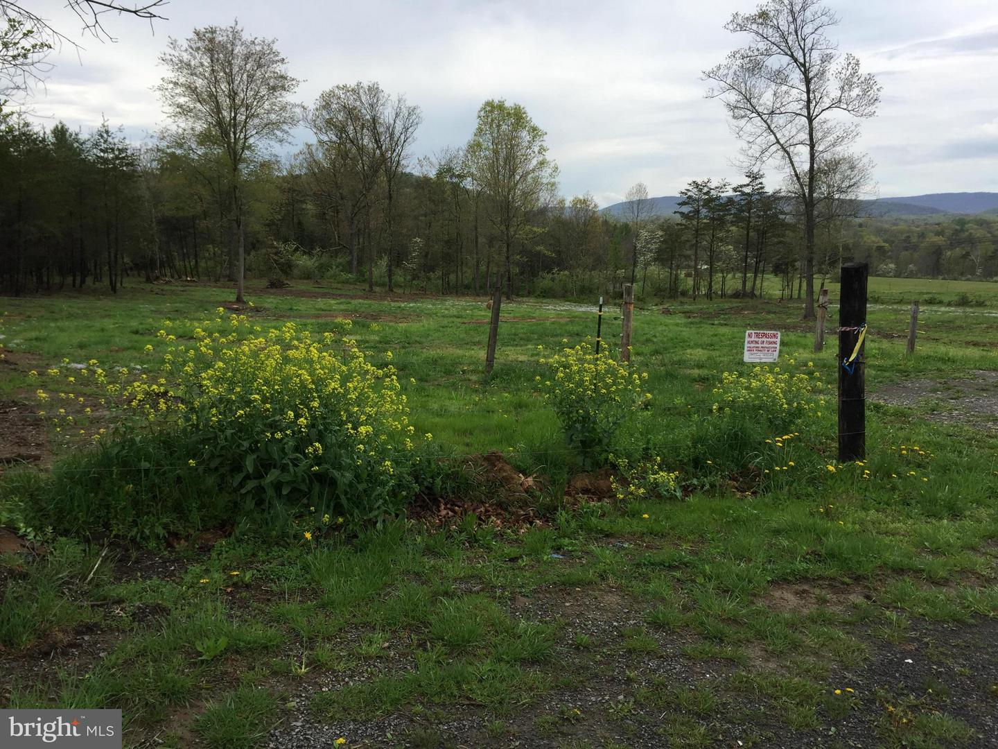 Wv 9 And Golliday Rd., Great Cacapon, WV, 25422