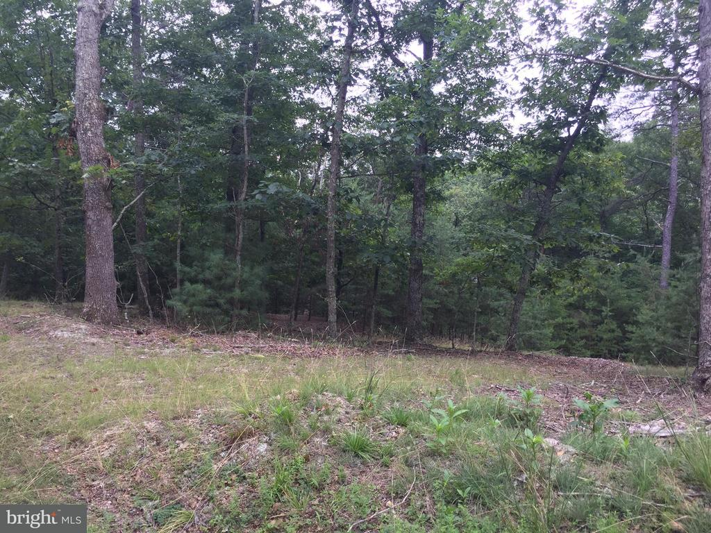 Deer Run Road, Berkeley Springs, WV, 25411