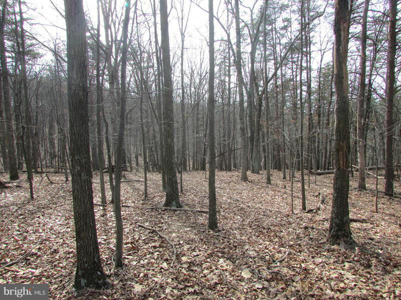 29 Cupps Hollow Road, Augusta, WV, 26704