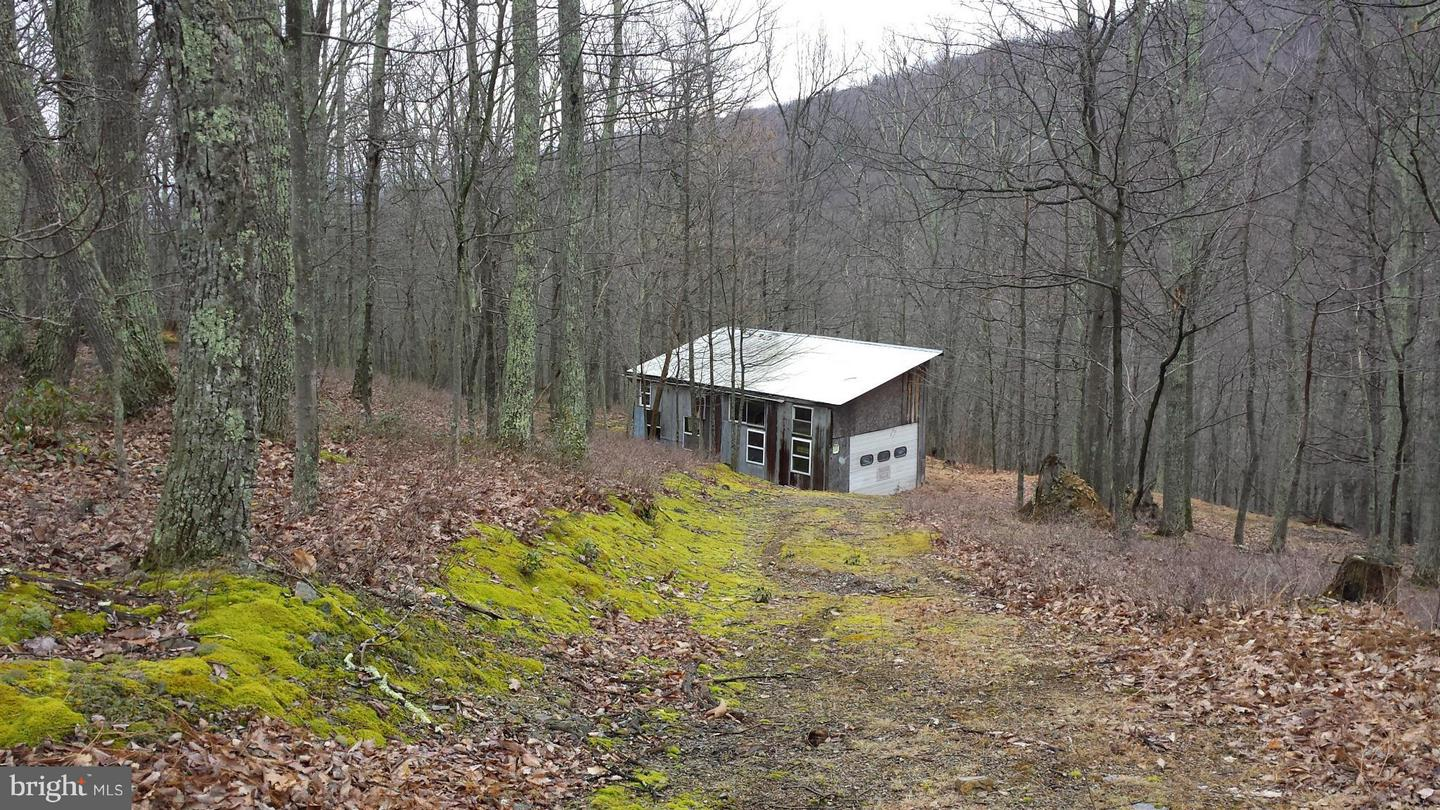 10 Off Route 220 High Knob, Old Fields, WV, 26845