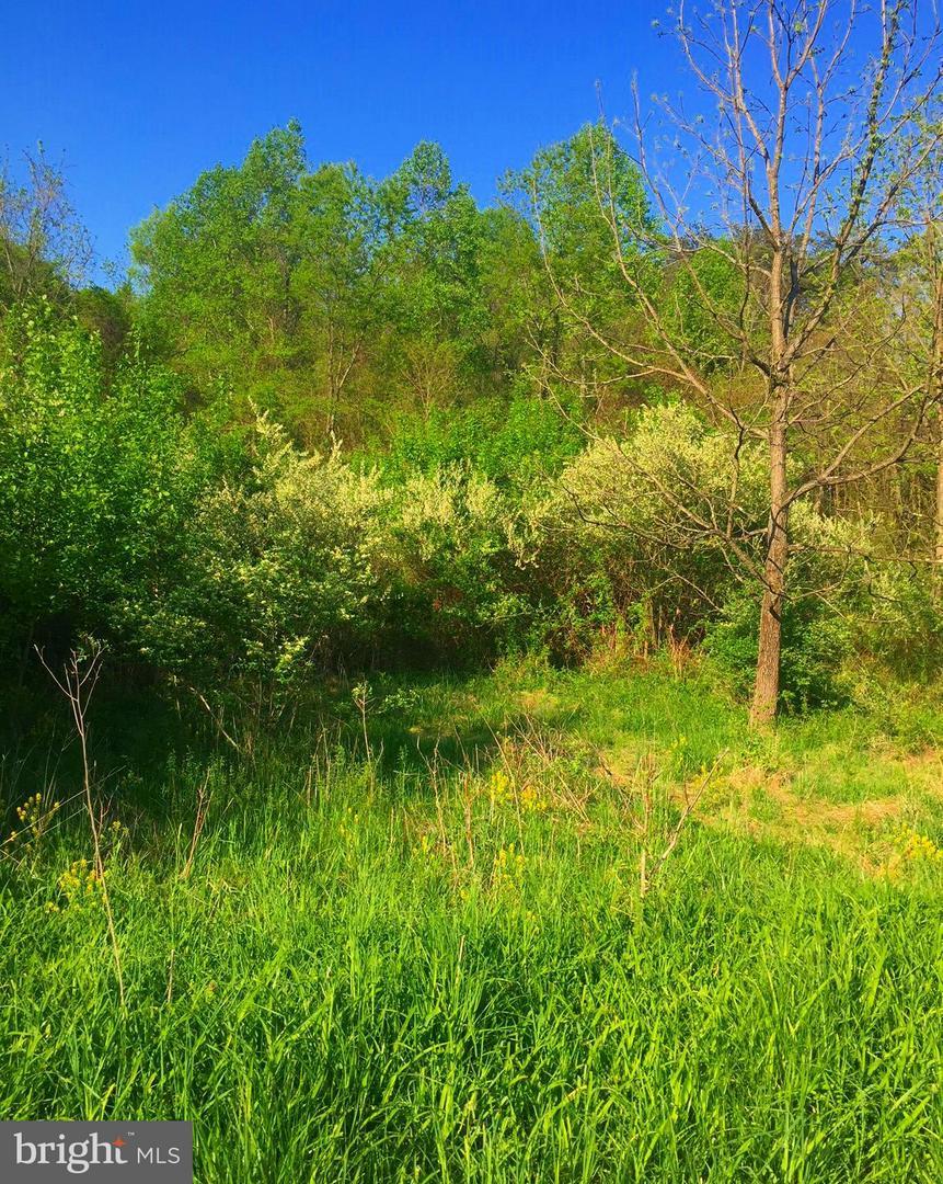 Back Creek Valley - Lot 11, Hedgesville, WV, 25427