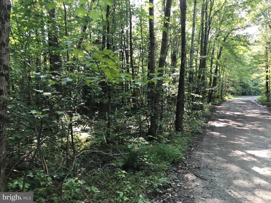 Shumate Lane, Fredericksburg, VA, 22406