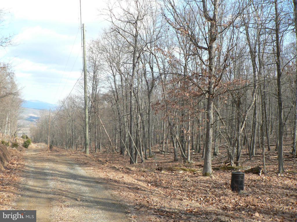 88.25 Wilderness, Petersburg, WV, 26847