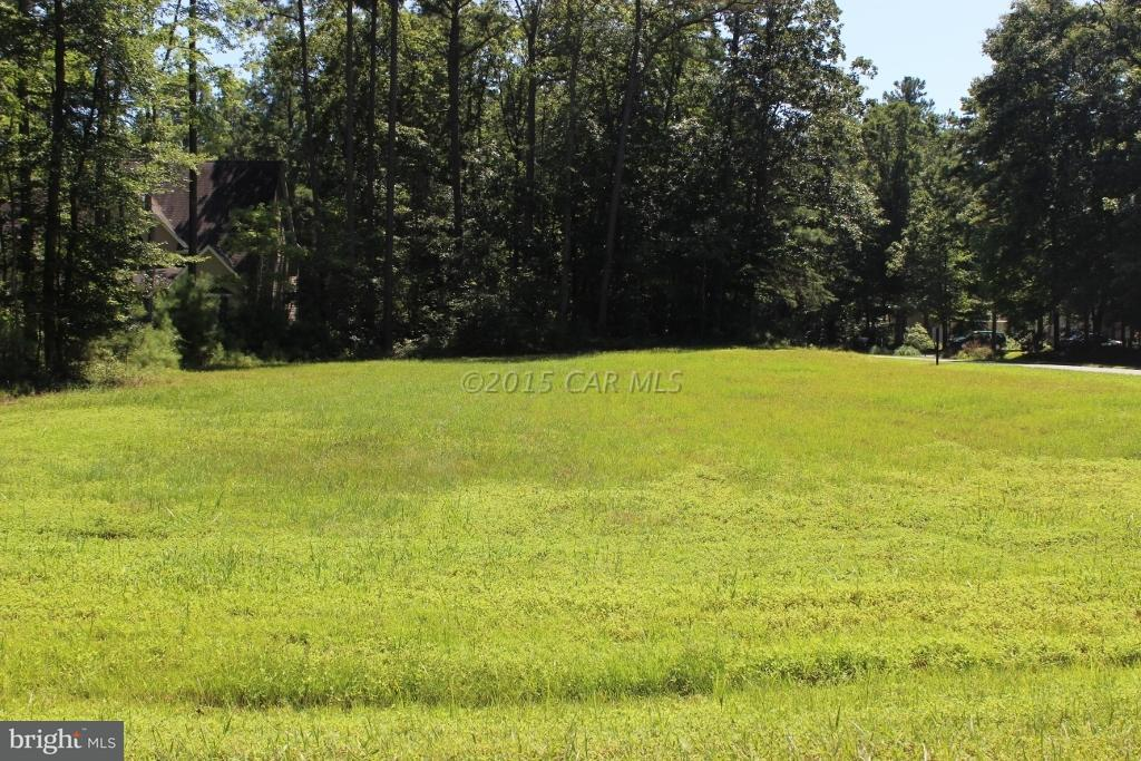 87  Pieces Of Eight,  Greenbackville, VA