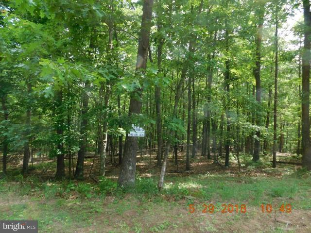 Lot 2b Hollybush, Berkeley Springs, WV, 25411