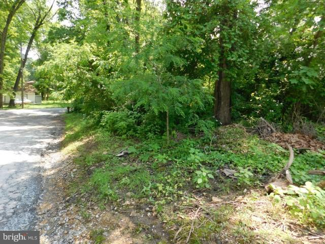 Paradise Valley Road LOT 1, Falling Waters, WV, 25419