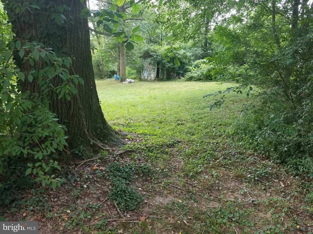 3906  Annandale,  Annandale, VA
