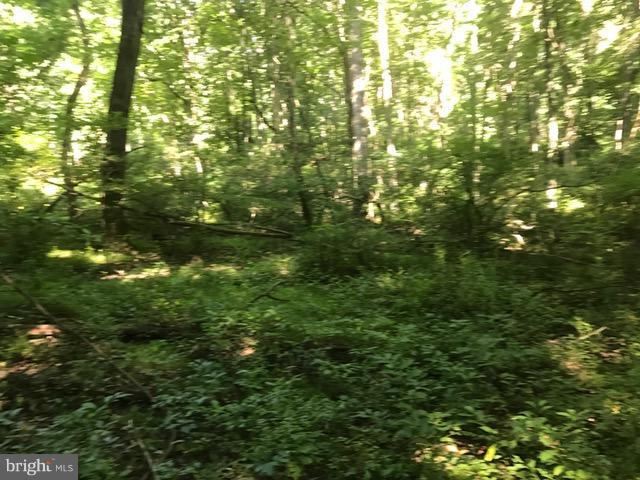 Timberline Dr., Lost River, WV, 26810