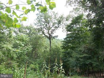 87A Sideling Mountain Trail, Great Cacapon, WV, 25422