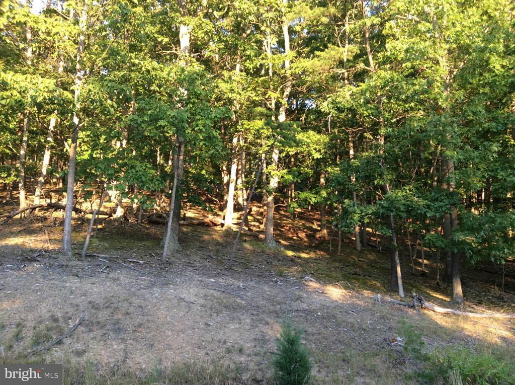 11 Moon Ridge, Burlington, WV, 26710