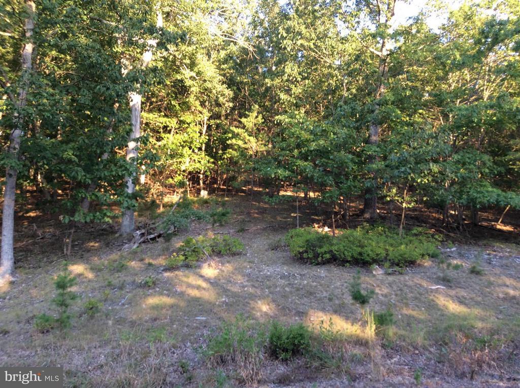 11 Moon Ridge, Burlington, WV, 26710