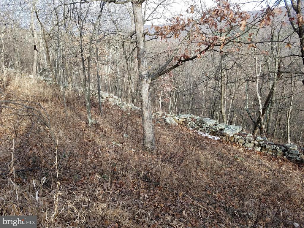 179 Lockinger, Moorefield, WV, 26836
