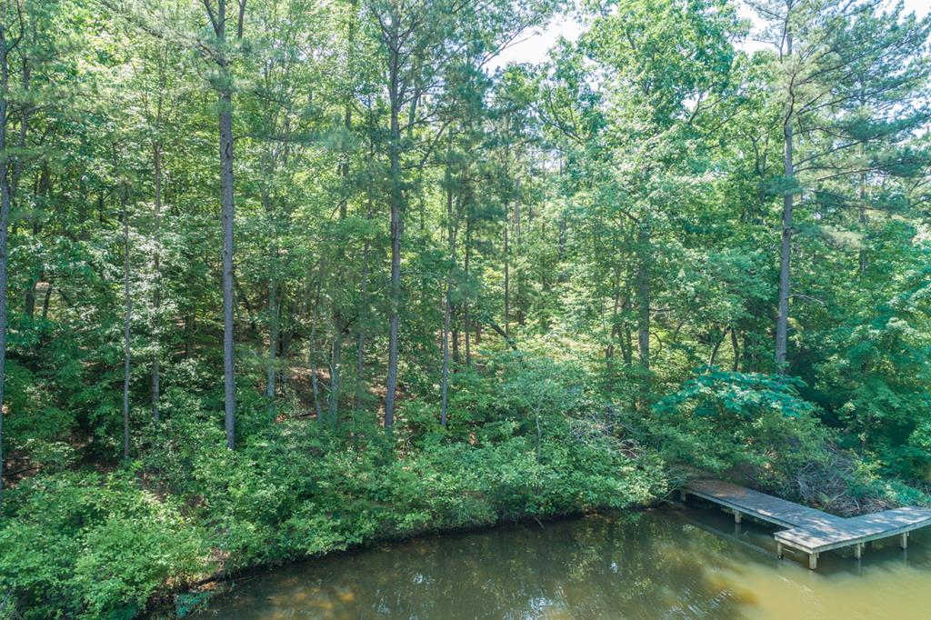 0  Great Creek,  Bracey, VA