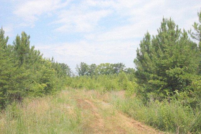 0  19 Carriage Hill,  Farmville, VA