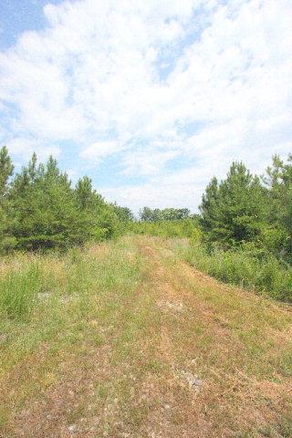 0 20 Carriage Hill, Farmville, VA, 23901