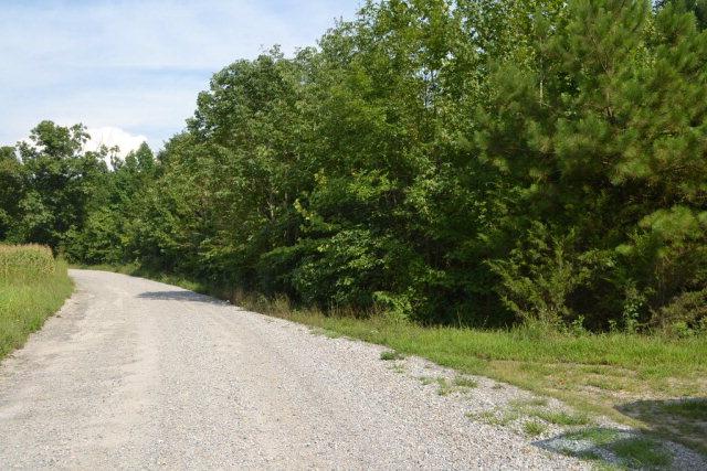 612  Leigh Mountain Road,  Farmville, VA