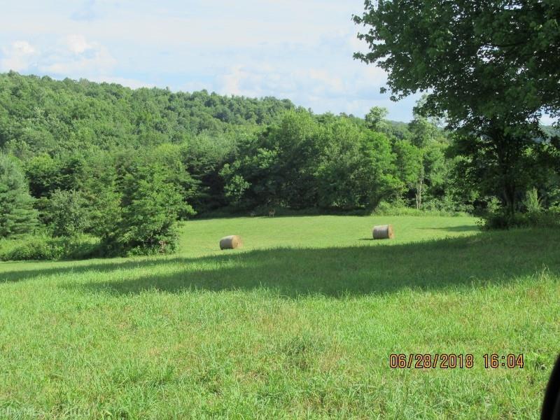 Meadow Run,  Floyd, VA