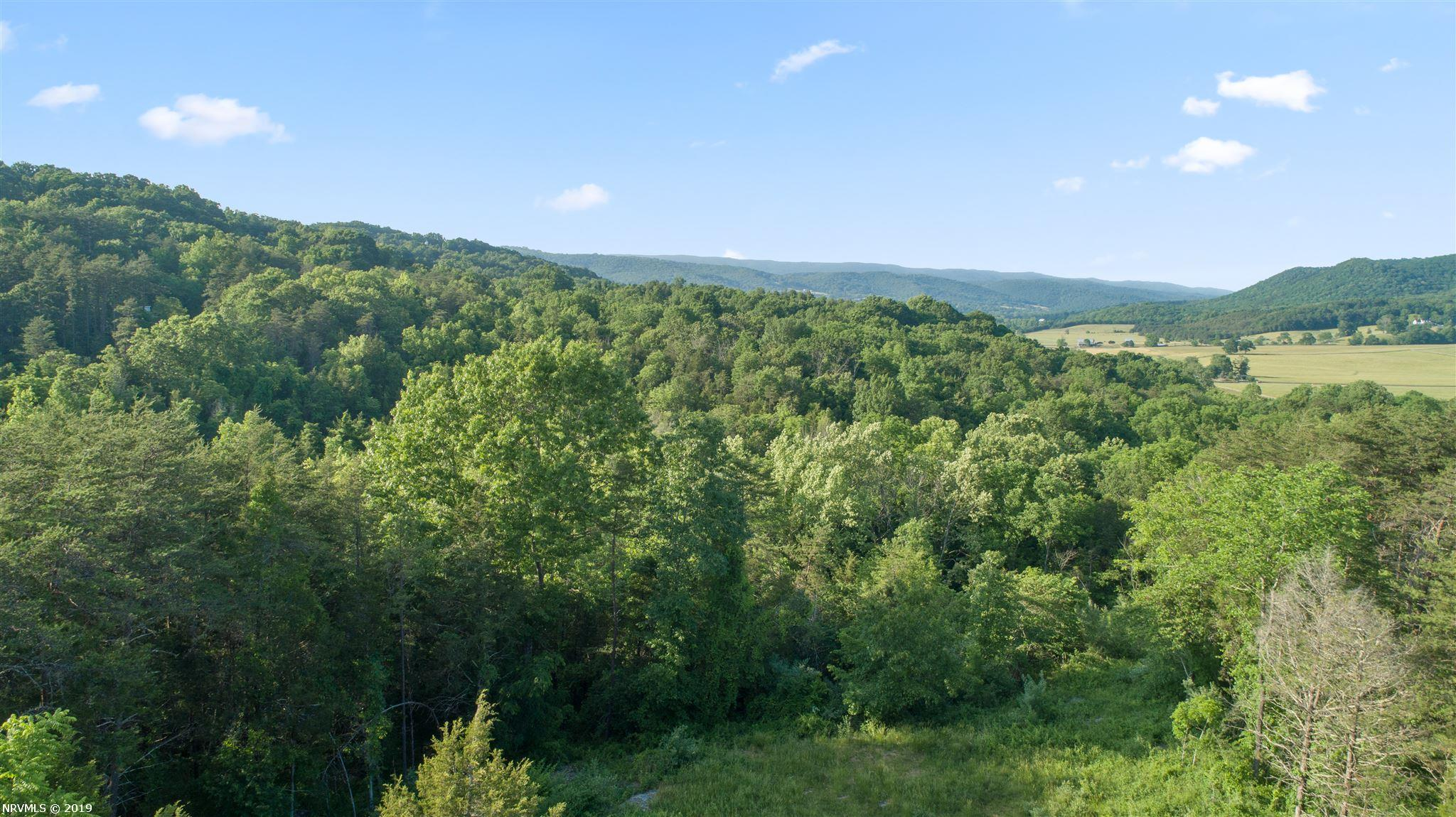 Lot B1  Nellies Cave,  Blacksburg, VA