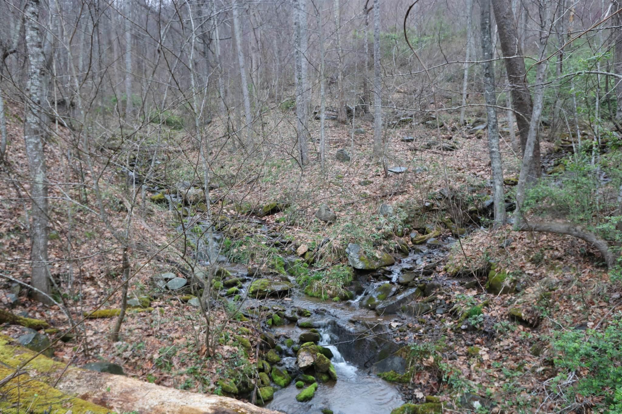 Shooting Creek,  Floyd, VA