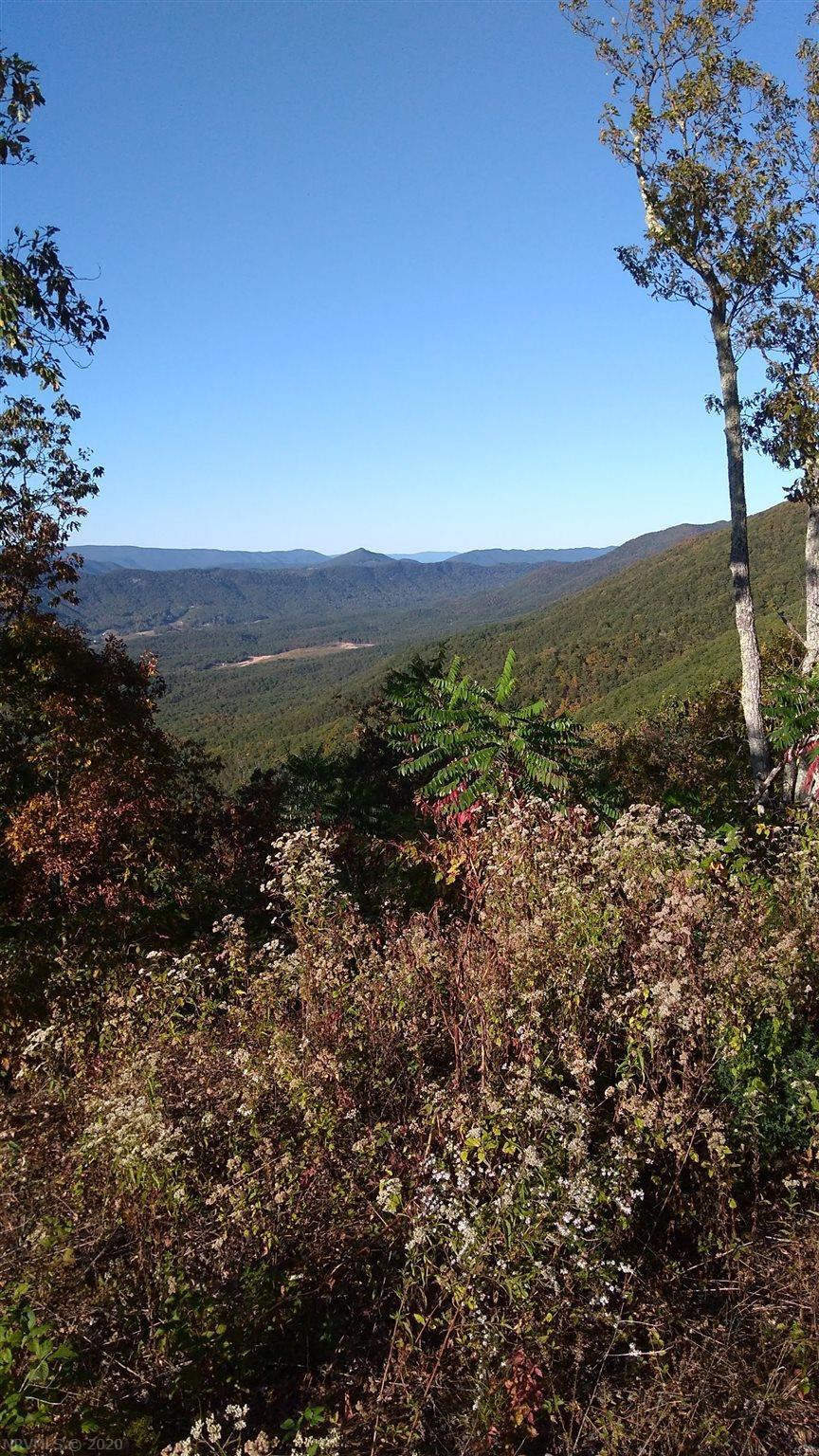 4095  Reece Mountain,  Roanoke, VA