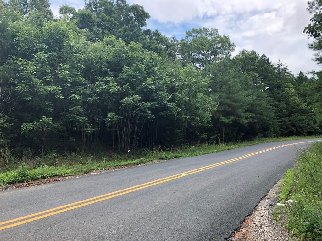 20  S Constitution Route,  Buckingham, VA