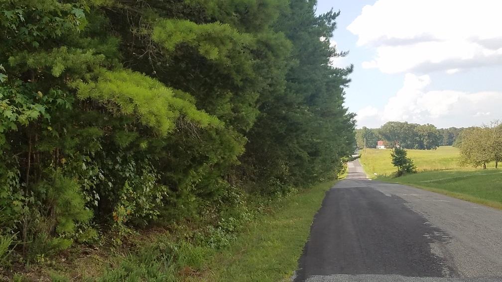 Wilkins Road, Alton, VA, 24520